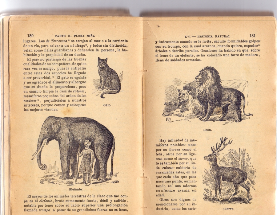 Sección Historia Natural